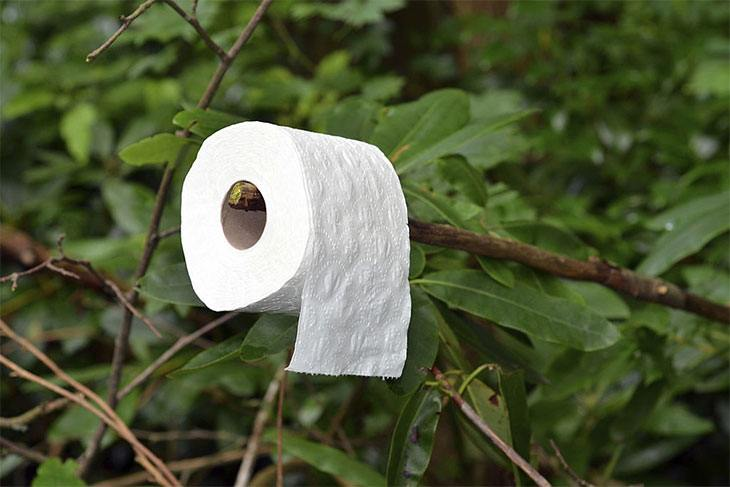camping without toilet paper