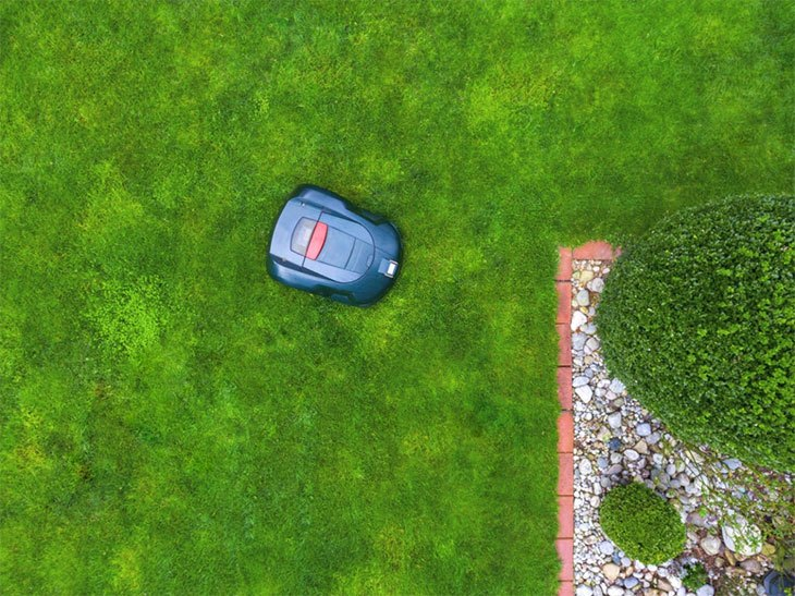 best robot lawn mower for the money