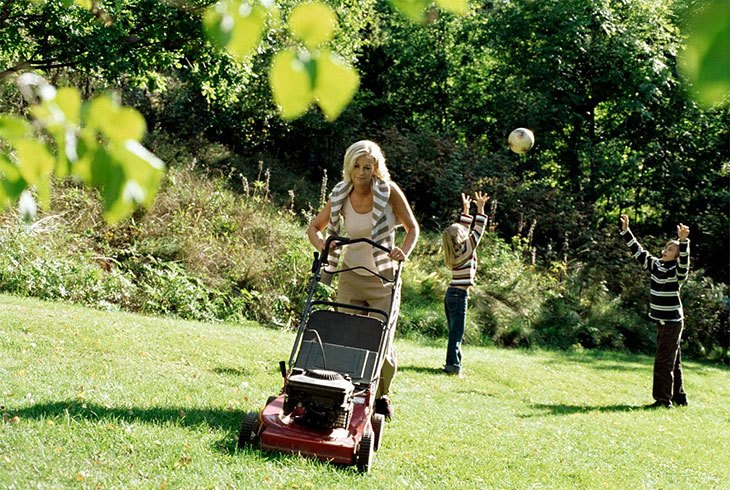 best petrol lawn mower engine
