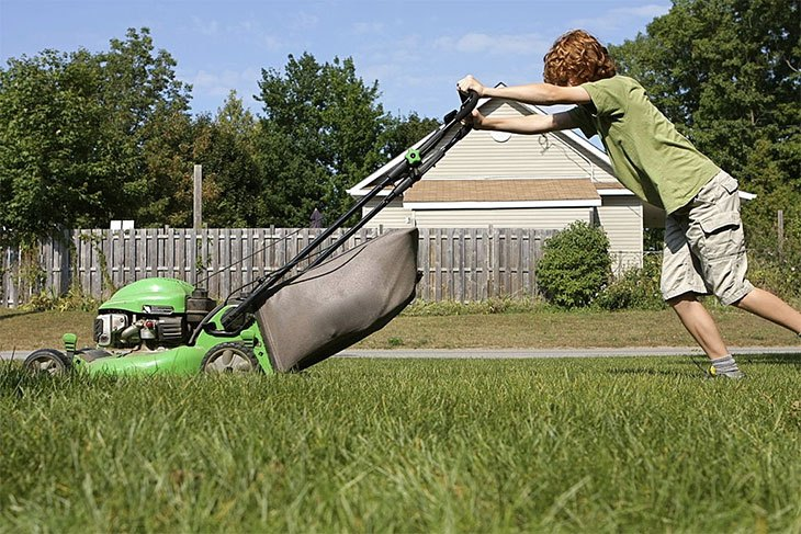 best affordable cordless lawn mower