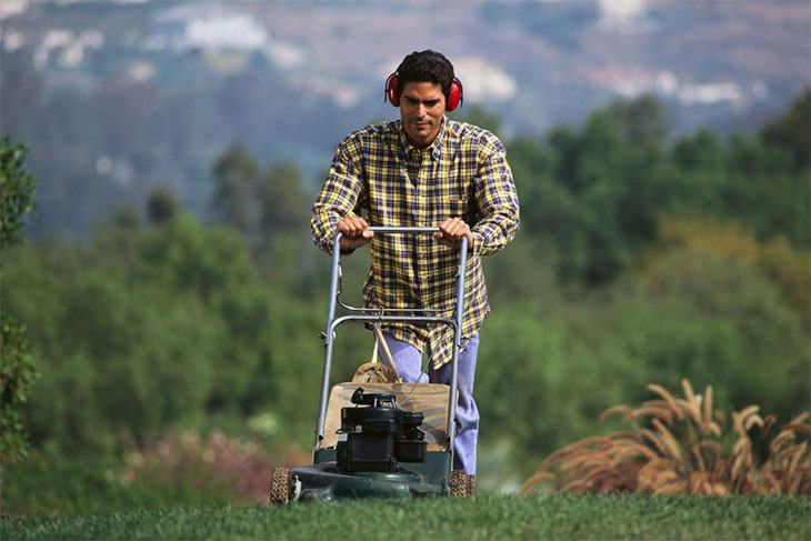 best petrol lawn mower brands