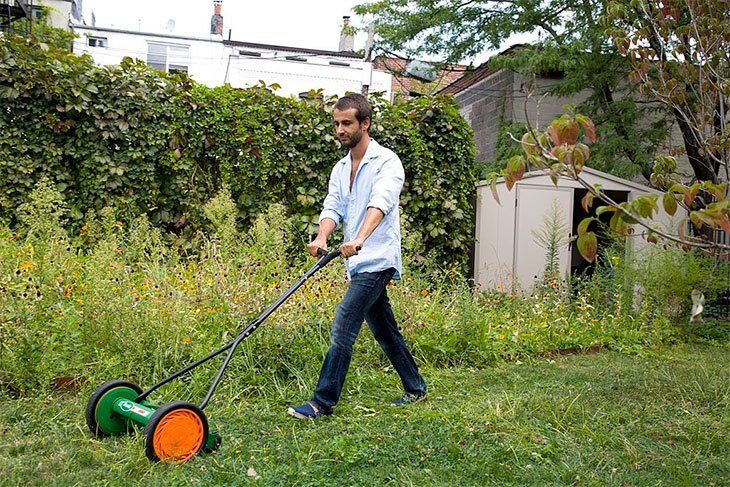 best lawn mower for a small garden