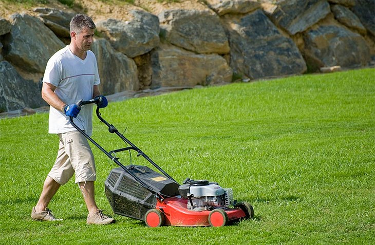 best petrol lawn mower to buy