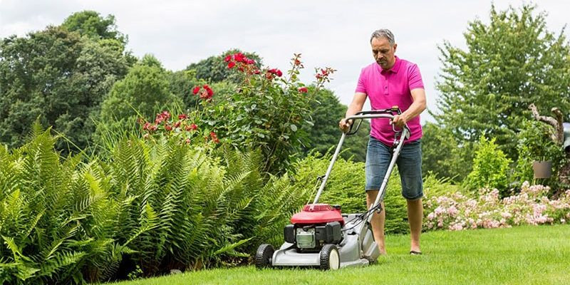 best roller lawn mower