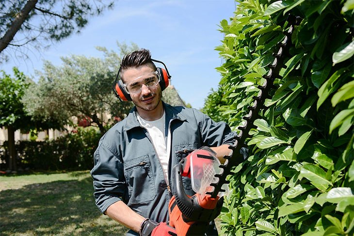 best electric hedge trimmer for thick branches