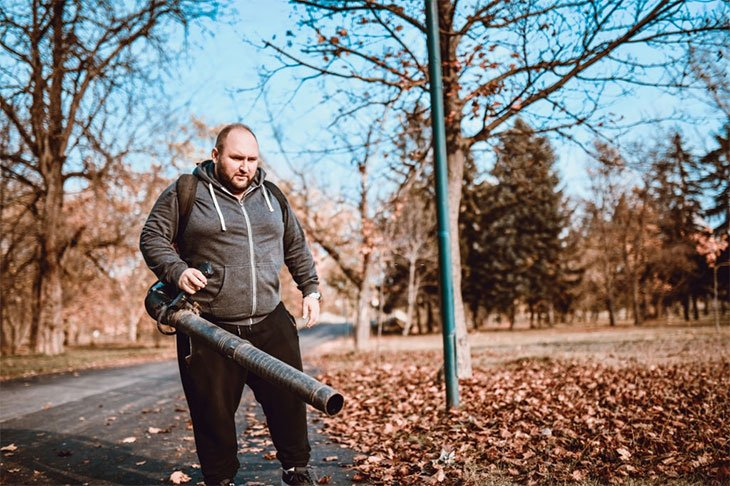 what is the best cordless leaf blower to buy