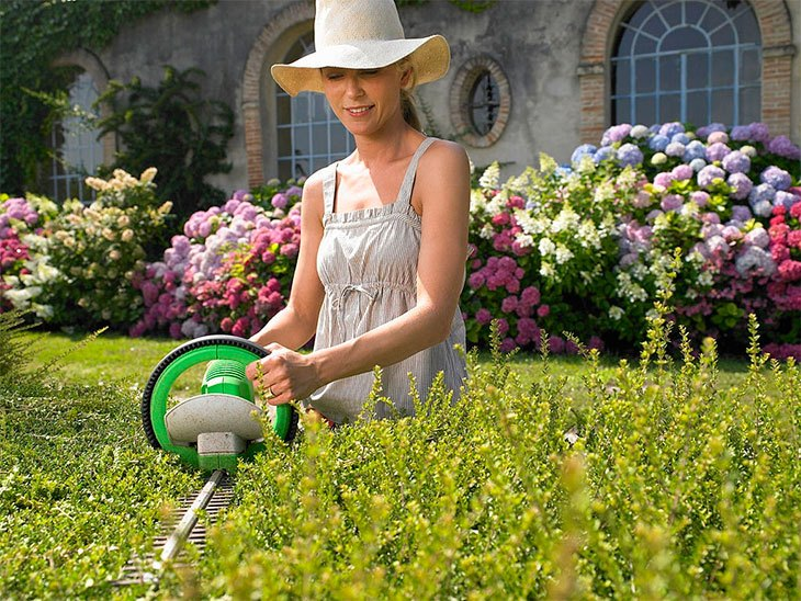best budget petrol hedge trimmer