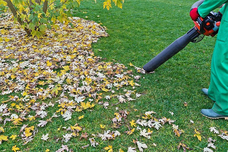 best cordless leaf blower for drying car