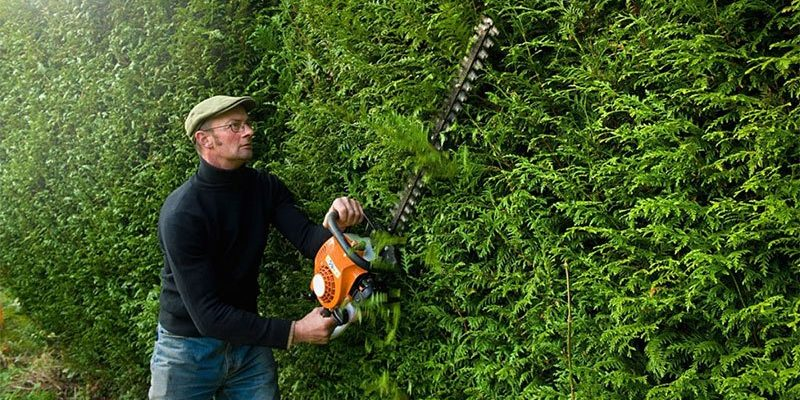 best petrol hedge trimmer