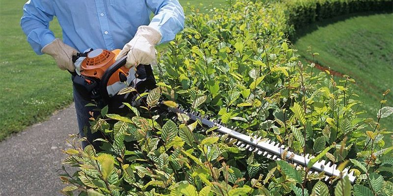 best lightweight hedge trimmer