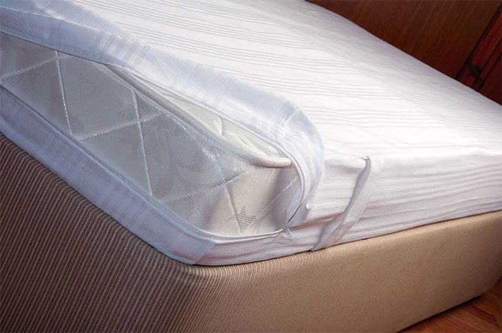 best mattress bed bug protector