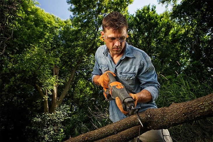 best pruning saw 2020