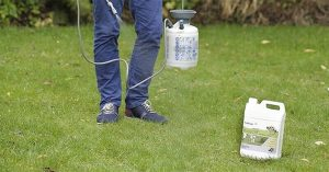 Get Spotless Results With The Best Moss Killer For Lawns