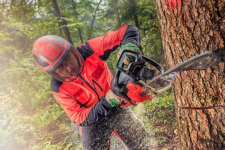 best cordless chainsaw on the market