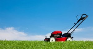 The Best Lawn Scarifier For the Perfect Lawn