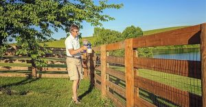 Refresh Your Fence With The Best Fence Sprayer